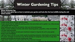 winter gardening tips visual ly