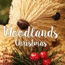 Christmas Decoration Theme - woodlands christmas theme the christmas cart