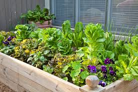 7 gorgeous raised bed vegetable gardens off grid world