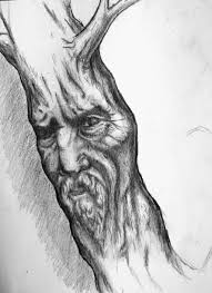 old man tree face by moostifur on deviantart