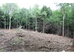 lot 2 sleepy hollow road essex vermont coldwell banker hickok