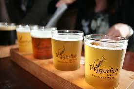 triggerfish brewery inside the paardevlei area strand just