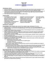 formal entry level project manager resume featuring strategic