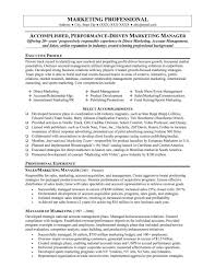 Executive Resume Template Doc Samples Of Marketing Resumes Executive Resume Templates Free