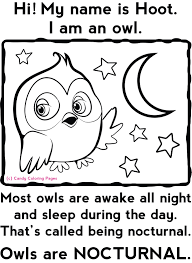 nocturnal animal coloring pages funycoloring