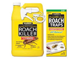 best roach killer for home use