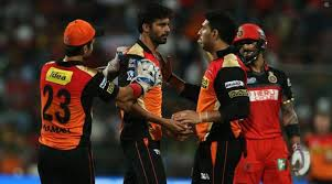 cricket san jose hair show april 2015 ipl 2016 final srh beat rcb by 8 runs crowned chions the
