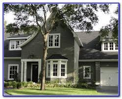 exterior house paint colour schemes nz painting home design
