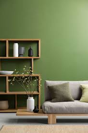 luxurius green wall paint c14 home sweet home ideas