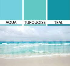 What Colour Goes With Teal For A Bedroom Best 25 Aqua Living Rooms Ideas On Pinterest Coastal Inspired