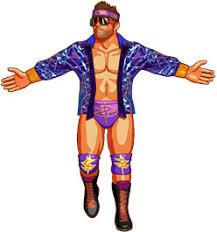 Shawn Michaels Halloween Costume Wwe Basic Kikzengiggles