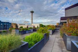 matae condominium belltown seattle urbanash real estate