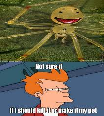 Scared Face Meme - it s hard to hate or be scared from a spider if it shows you a