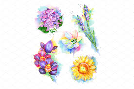 Painting Icon Flowers Watercolor Painting Icons Creative Market