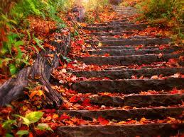 Imagenes De Otoño Para Fondo De Escritorio   fondos de pantalla otoño paisajes para fondo de pantalla en 4k 7