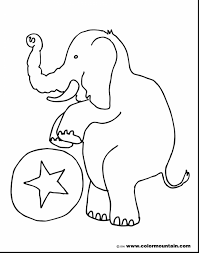 fantastic cartoon character drawing sketch with dumbo coloring