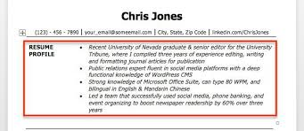 profile examples for resumes areas of expertise resume examples