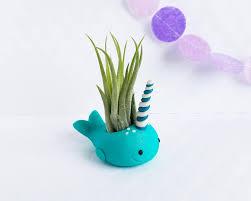 whale air plant holder air planter desk accessory gift