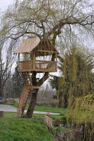 23 best tree forts images on pinterest treehouse ideas a tree