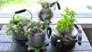 indoor herb garden ideas 15 incredible ideas for indoor herb garden
