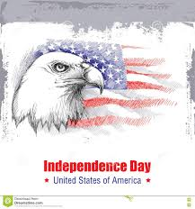vector sketch of bald eagle head on the background with american