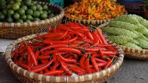 cours de cuisine vietnamienne cours de cuisine vietnamienne avec visite du marché hô chi minh