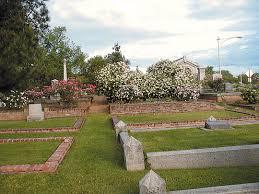 sacramento native plants pacific horticulture society sacramento u0027s historic rose garden