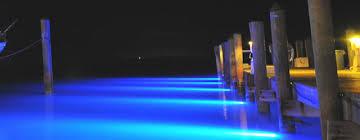 underwater led dock lights underwater led dock lights deanlevin info