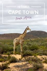 best 25 cape town south africa ideas on pinterest cape town