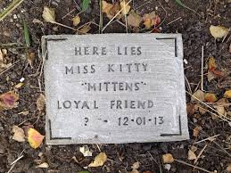 diy pet tombstone memorial stone 5 steps with pictures