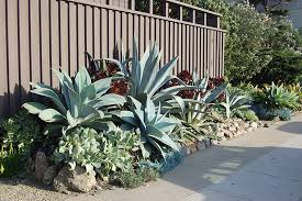Drought Friendly Landscaping by Xeriscaping Drought Friendly Landscaping