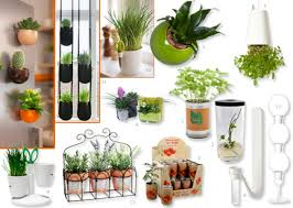 plantes dans la chambre déco déco 10 astuces green pour votre studio l etudiant trendy