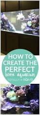 Home Aquarium How To Create The Perfect Home Aquarium Totally The Bomb Com