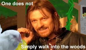 Boromir Memes - boromir meme into the woods by alianacrow on deviantart