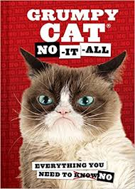 grumpy cat wrapping paper grumpy cat no it all everything you need to no grumpy cat
