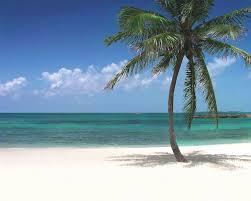 atlantis paradise island royal towers bahamas reviews