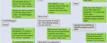 Memes For Iphone Texts - thank you for signing up for cat facts weknowmemes