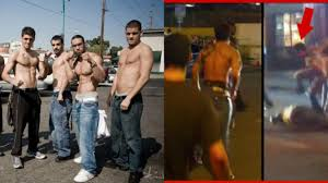 top three videos of ufc fighters getting in street fights