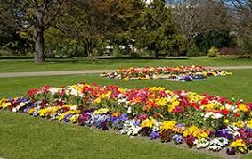 flowering gardens christchurch city council