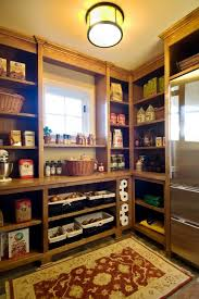 walk in kitchen pantry ideas 47 cool kitchen pantry design ideas shelterness