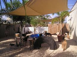 Backyard Ideas For Dogs Best 10 Dog Backyard Ideas On Pinterest Garden Makeover Media