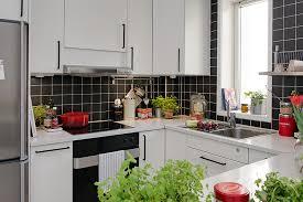 Small Apartment Kitchen Designs Open Kitchen Designs In Small Apartments Of Worthy Kitchen Design