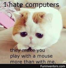 Funny Computer Meme - cats and dogs playing with computers you know who wins