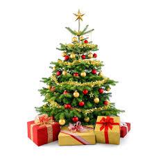 image christmas star decoration christmas tree present bow balls