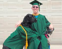 dog graduation cap and gown dog graduation cap and gown