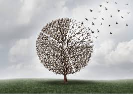 transferring commerce business financial concept as a tree with