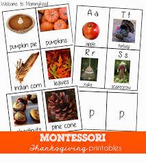 thanksgiving activities montessori 3 part cards and beginning