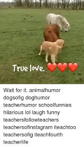 Memes About True Love - 25 best memes about true love waits true love waits memes