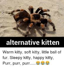 Soft Kitty Meme - 25 best memes about happy kitty happy kitty memes