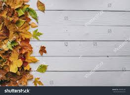 rustic wallpaper borders autumn